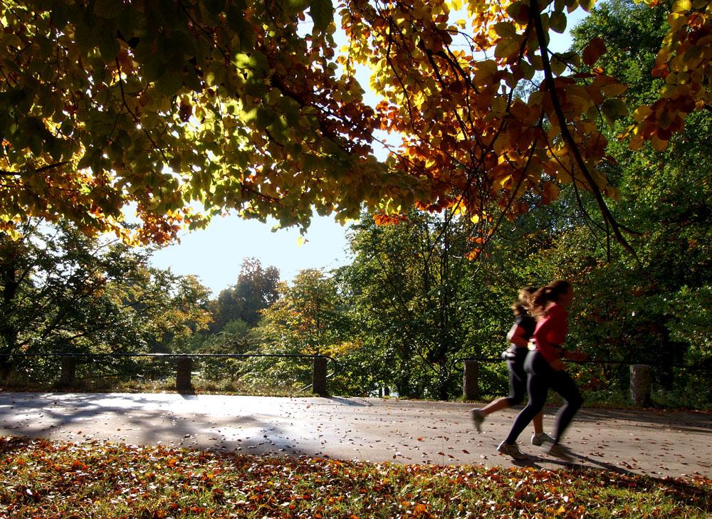 Running through a park